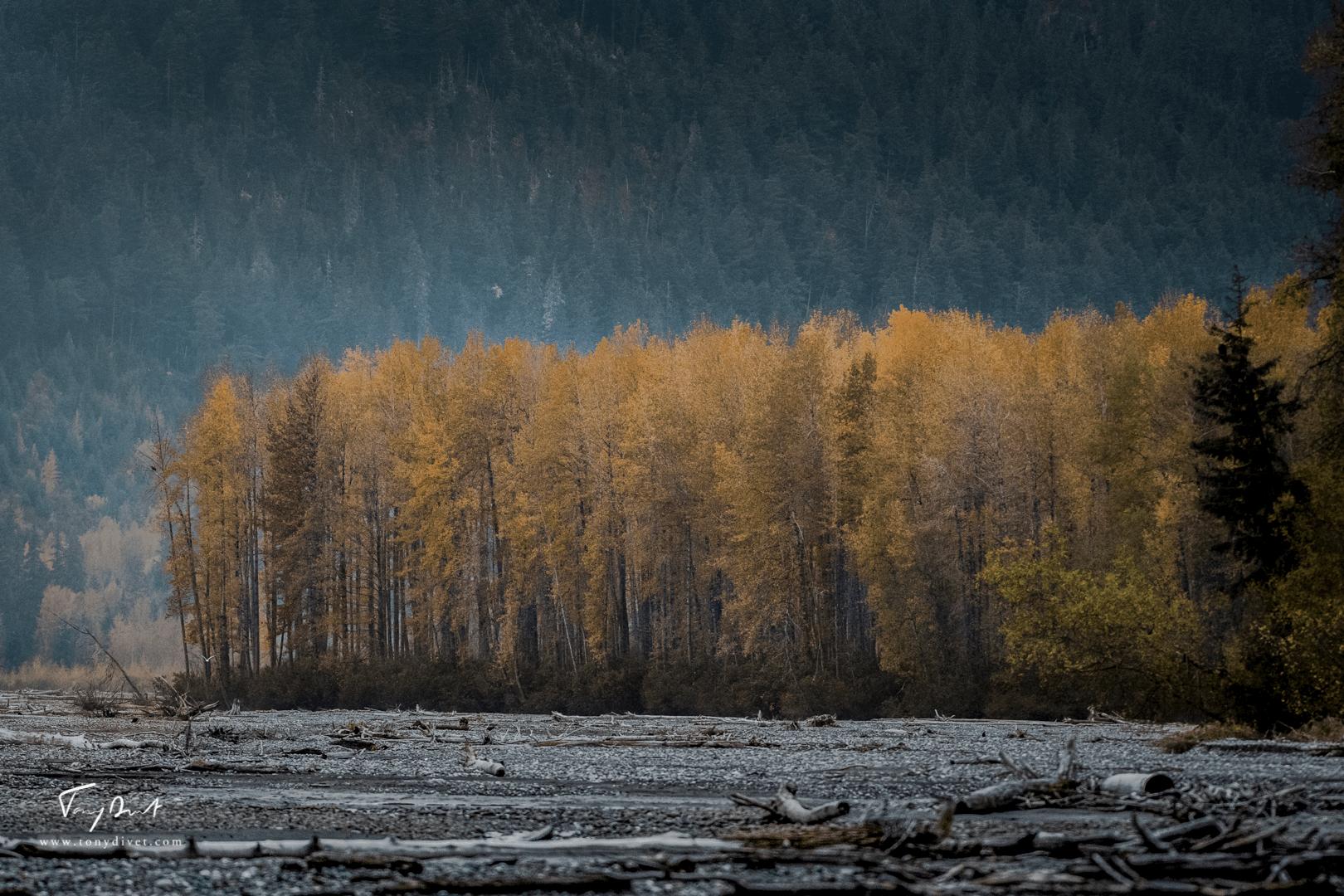 Alaska-4581