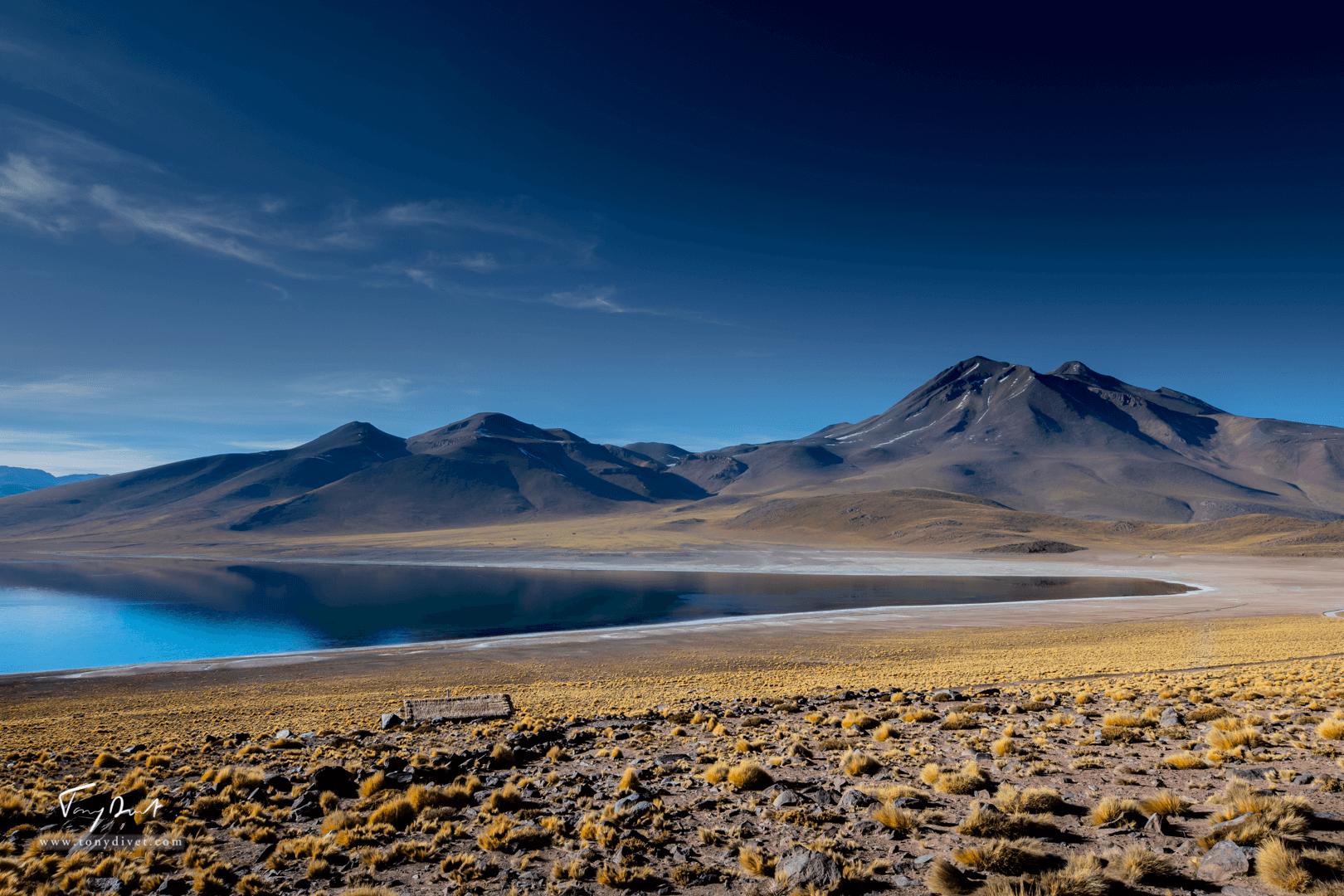 Chili-3503