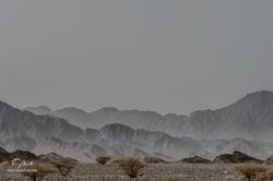 Sultanat d'Oman-6965