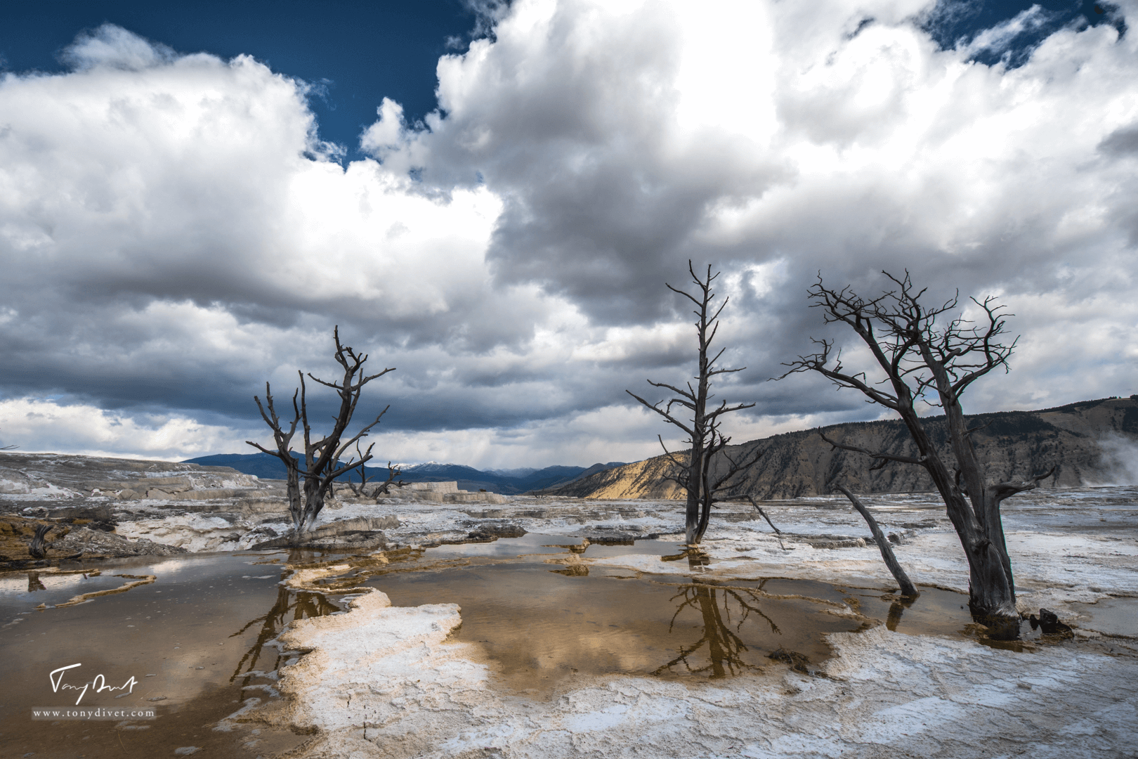 Yellowstone-2-3