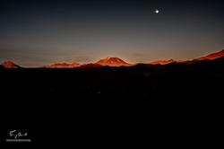 Chili-3475
