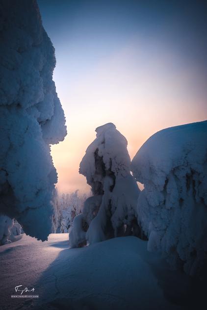 Laponie-3586.png