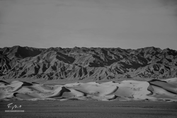 Mongolie-1090