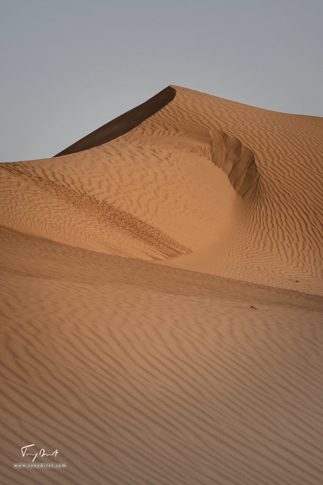 Sultanat d'Oman-8374