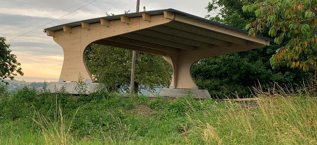 Carport à toiture cintrée sur l'arrière