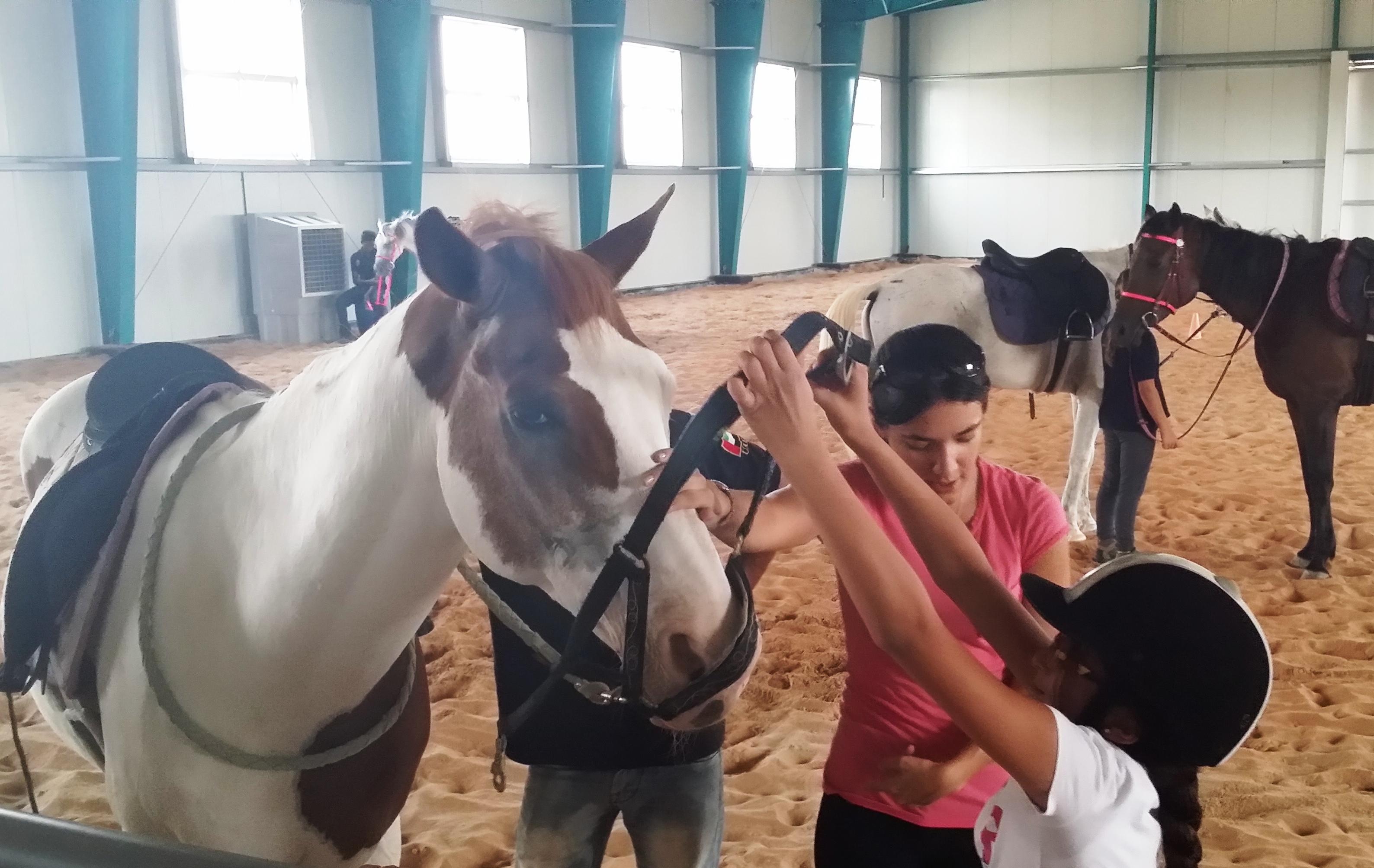 Dhabian Summer Surprises Camp