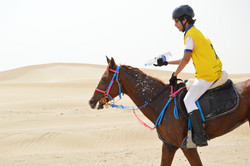 Saif and Crusaider @ Bou Theeb 80 km Qualifier