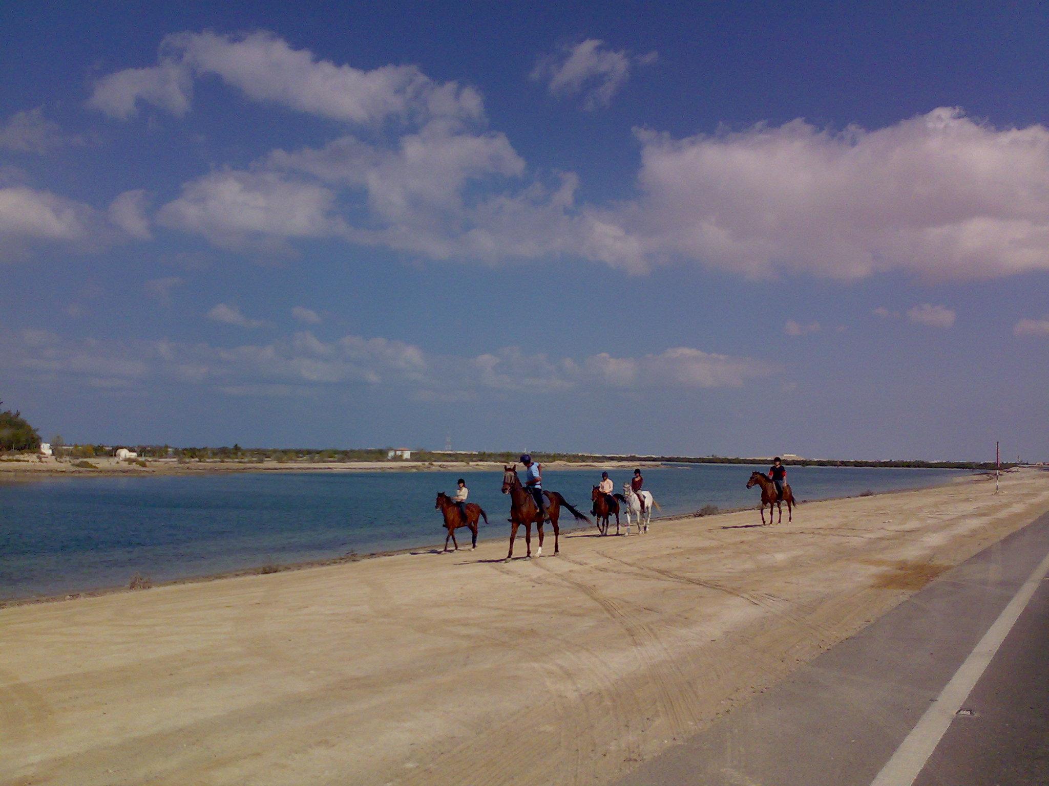 DEC @ Shaliela Beach