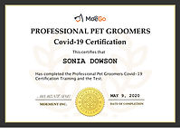 Covid-19 Groomers Certification