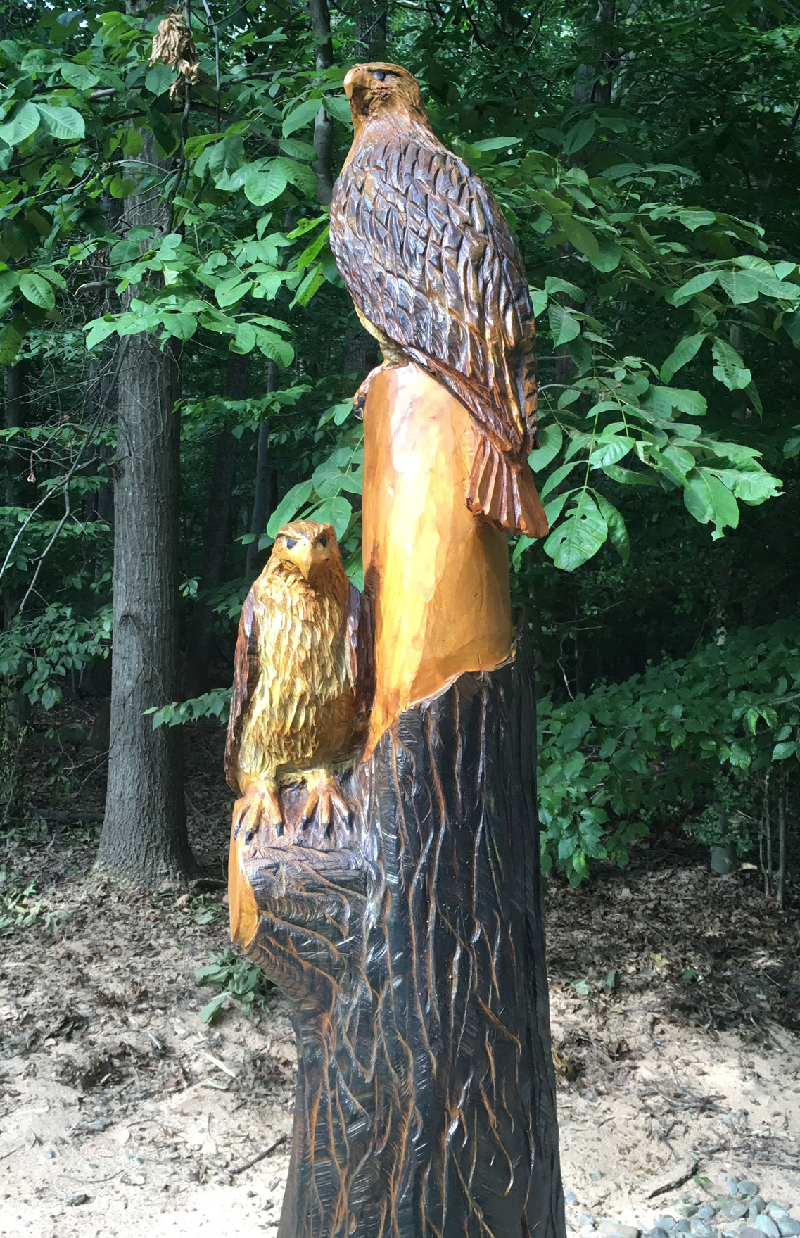 AM Sculptures- Red Tail Hawk Stump