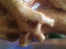 AM Sculptures- Treefrog