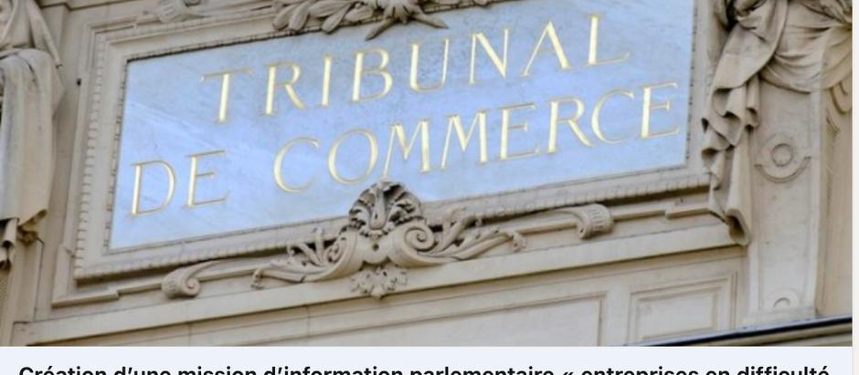 Mission d'information parlementaire sur les entreprises en difficulté