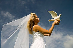 Angle view of bride releasing a white dove
