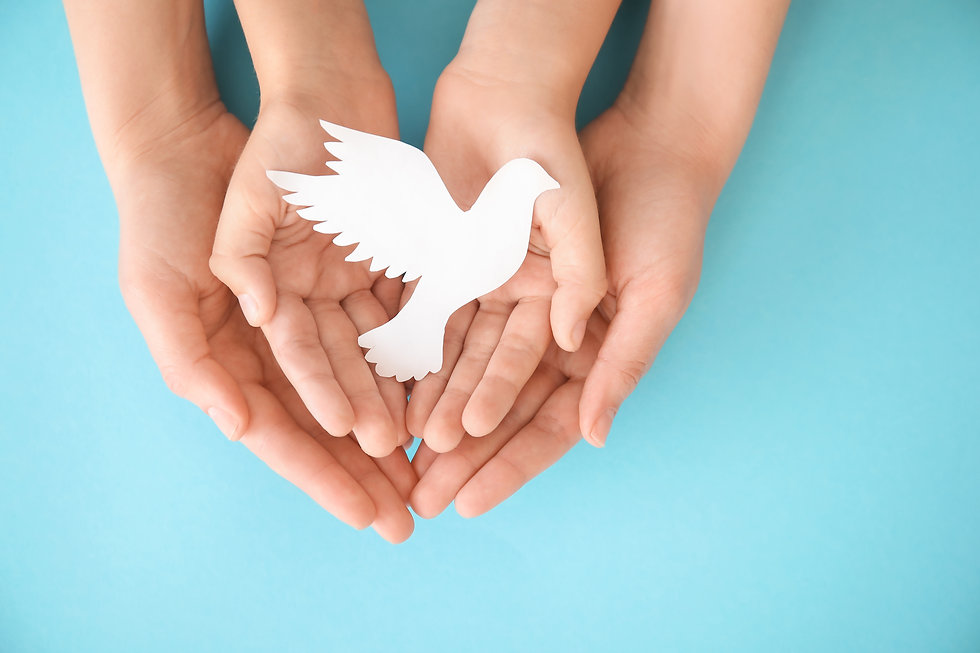 Hands of family with paper white dove on color background