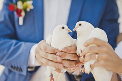 The custom of releasing doves at a wedding ceremony.