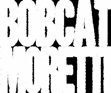Bobcat-Moretti-wm.png