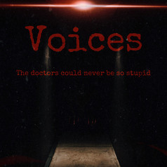 Voices-poster.jpg