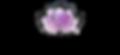 Chamoson Valais institut beauté L'Evanescence soins Microblading