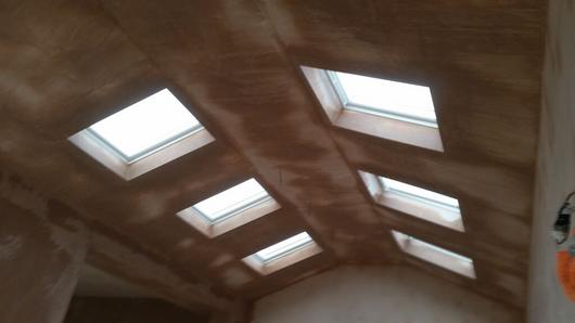 Ceilingplastering/michaelhurdus