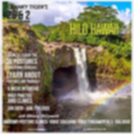 Waterfall hilo Insta_edited_edited.webp