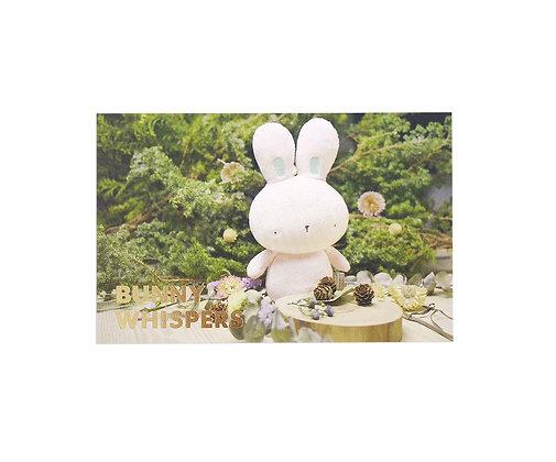 Bunny Whispers Postcard