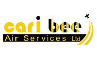 Cari-Bee Air Services Ylwblk logo.jpg