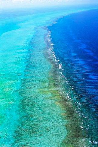 barrier reef.jpg