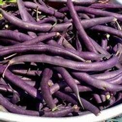 Louisiana Purple Beans