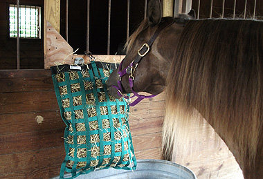 Busy Buffet Regular Feeder Hay Bag