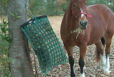 Busy Grande Slow Feeder Hay Bag