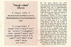 Rough Notes