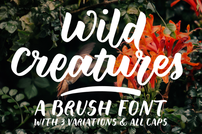 New font! Wild Creatures