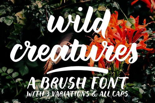 Wild Creatures brush font family