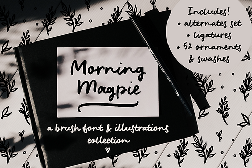 Morning Magpie brush font and illustrations