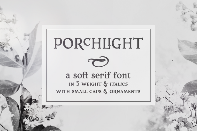 New font and intro sale! Porchlight serif font