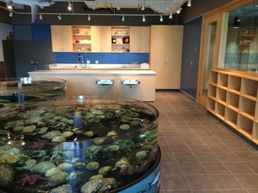 Vancouver Aquarium Wetlab