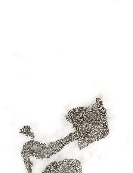 Shapiro_UnitSketch2.jpg