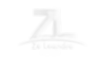 logo dourada sem fundo_edited_edited.png