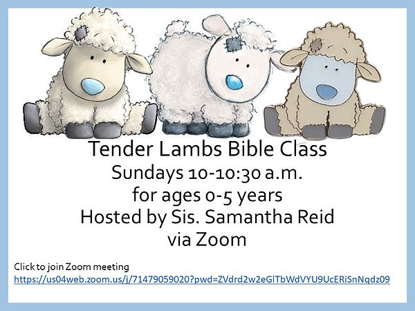 Tender Lambs corrected slide.jpg