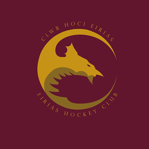 Final Hockey logo full pantone colourize