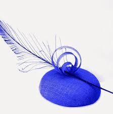 Pluma Azul.jpg