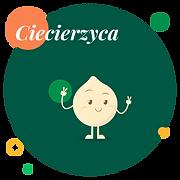 be-strąk_wix_layout_PRZEPISY_postacie_CI