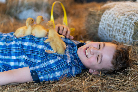 teen boy lying in the hay with yellow du