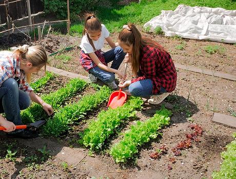 Image of family gardening in backyard at