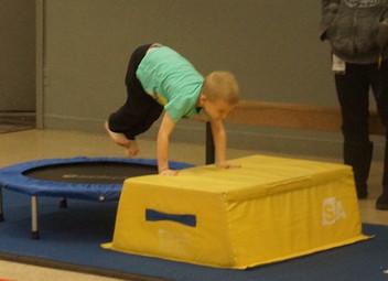 gymnastics6.jpg