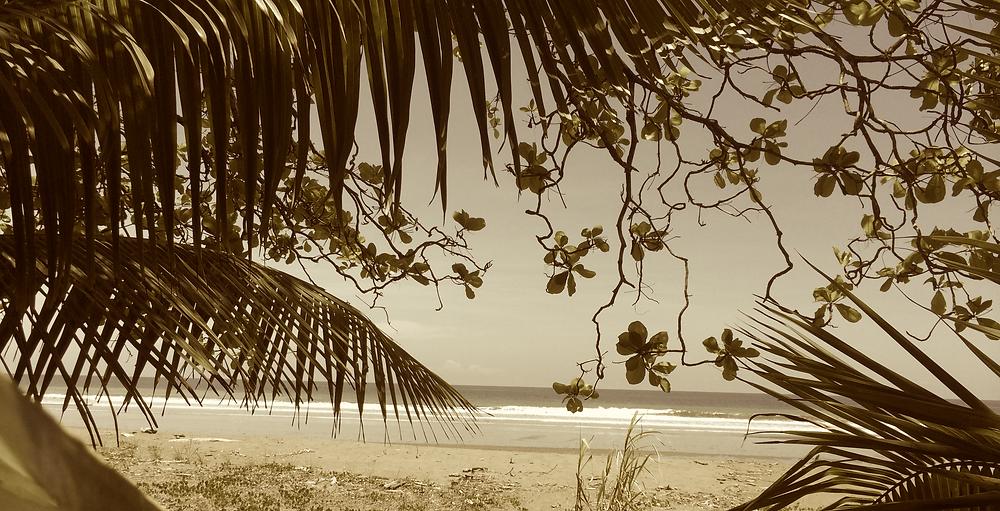 Welcoming Picture of Costa Rica Beach