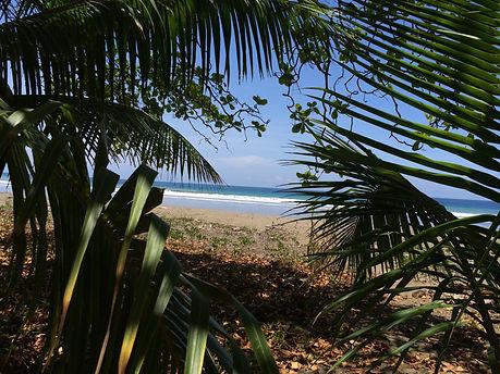 Costa Rica Beach 4.jpg