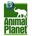 Rugged Productions owner Christopher Goettsche has worked on numerous episodes on Animal Planet