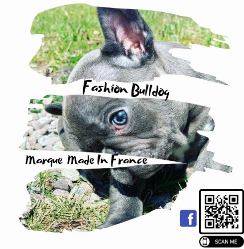 Fashion Bulldog Logo.png