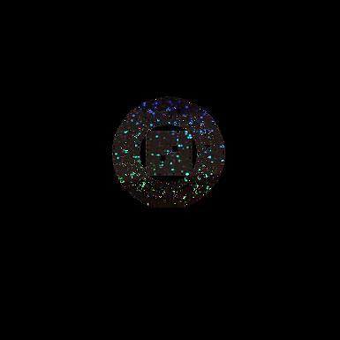 Hologram Black Designer F